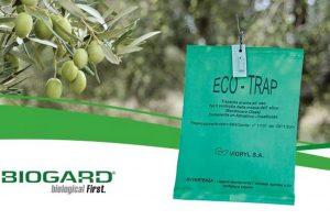 Sacchetto ecotrap contro la mosca dell'olivo