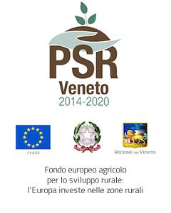 Loghi dell'Avepa, Regione Veneto, Europa Unita, Governo Italiano